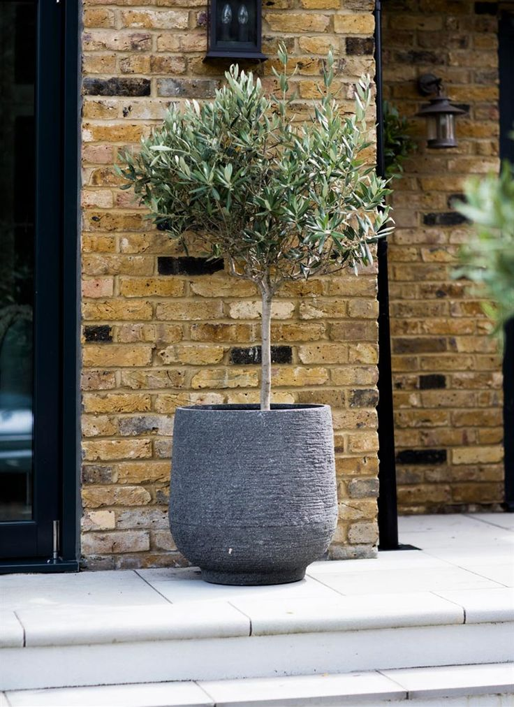 The Longborough Planter Large is sophisticated in style and fully weatherproof