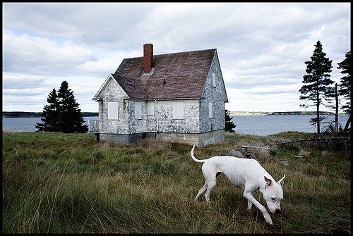 Lighthouse Keeper's Cottage, Nova Scotia by Ezra Caldwell