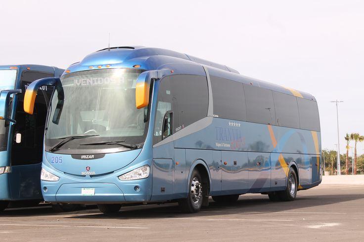 El autobus 205