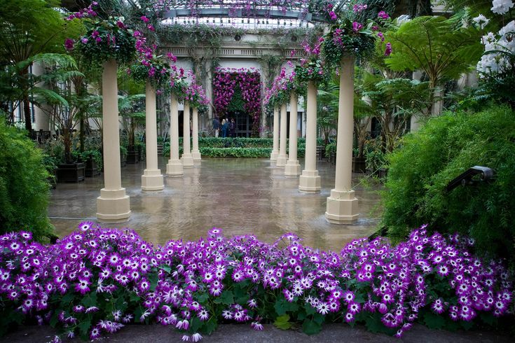 Longwood Gardens, Kennett Square PA.: Favorite Places, Favorite Gardens, Beautiful Places, Purple Passion, Longwood Gardens, Outdoor Spaces, Beautiful Gardens, Things Beautiful, Gardens Growing
