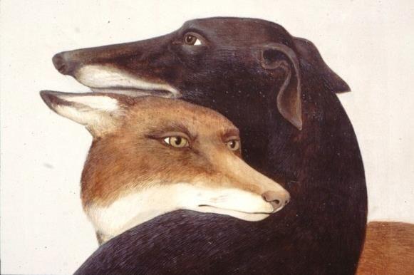 ulvehund.tumblr.com