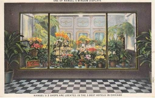 POSTCARD - CHICAGO - MANGEL'S FLORISTS - WINDOW DISPLAY - SHOPS IN 3 BEST HOTELS - EARLY