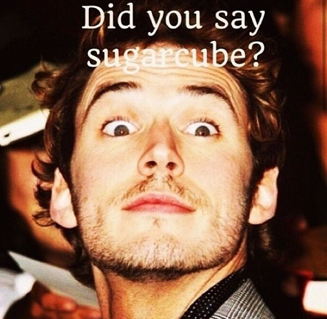 The Hunger Games - Catching Fire - Finnick Odair - Did you say sugarcube?