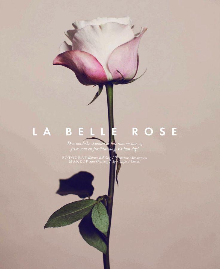 'La Belle Rose'. Elle Denmark March 2013.