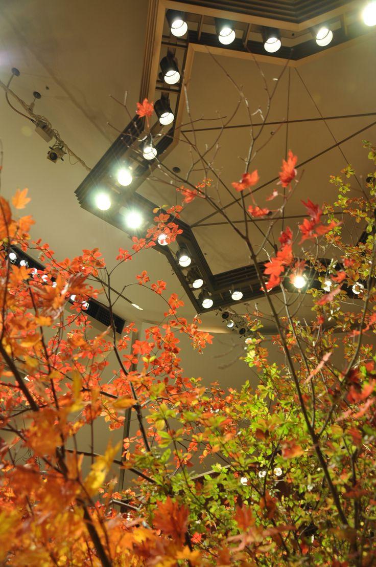 2014年11月2日 津田ホールにて発表会
