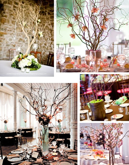 59 best twigs sticks images on pinterest centerpiece ideas wedding wedding branches arranged the dinner table junglespirit Choice Image