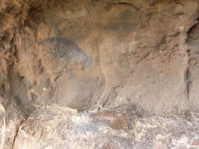 Kredit: David Pearce  Az egyik hal a helyszínen 5000 éves rock-art a Thune Valley, Botswana. Ez a festmény nyúlik a későbbi kőkorszaki.