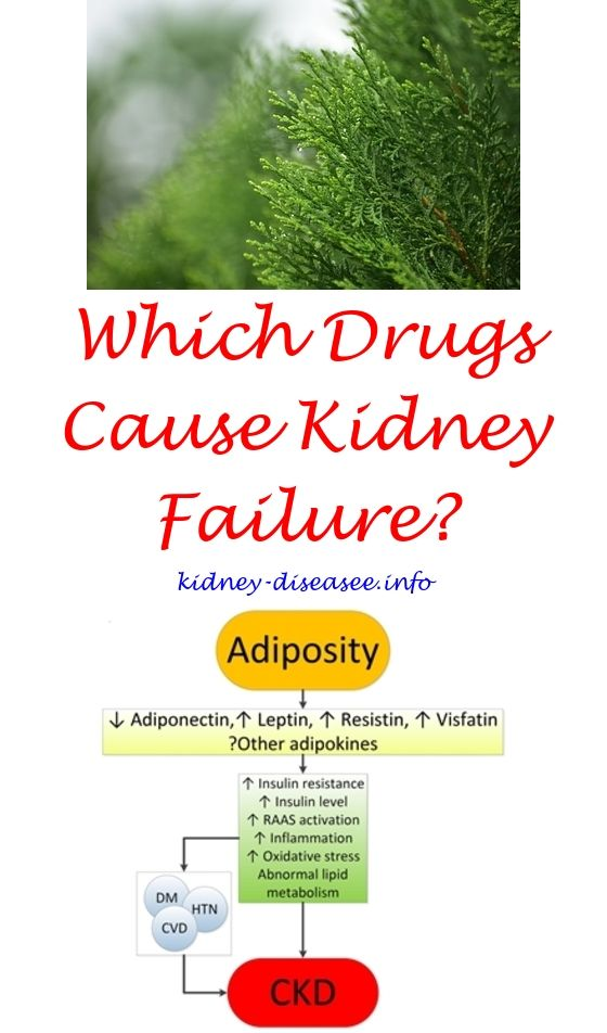 kidney infection diagnosis - what causes kidney failure in young adults.kidney transplant incision 7662574884
