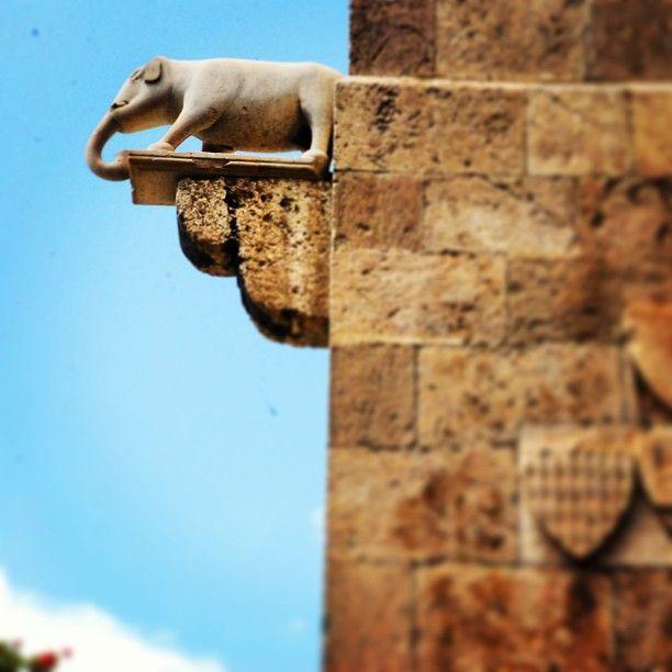 Torre dell'Elefante - Cagliari Tours