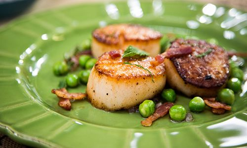 Home & Family - Recipes - Curtis Stone Makes Seared Scallops and Peas with Bacon and Mint | Hallmark Channel