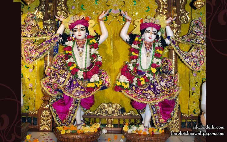 To view Gaura Nitai  Wallpaper of ISKCON Dellhi in difference sizes visit - http://harekrishnawallpapers.com/sri-sri-gaura-nitai-iskcon-delhi-wallpaper-006/