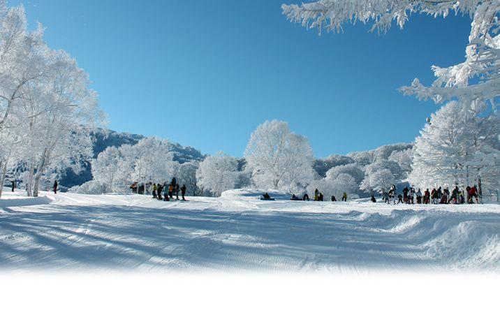 Nozawa, snowboarding
