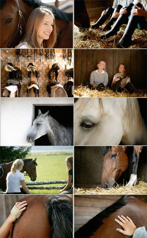 Конный спорт, кони, лошадь, верховая езда | Riding, horse