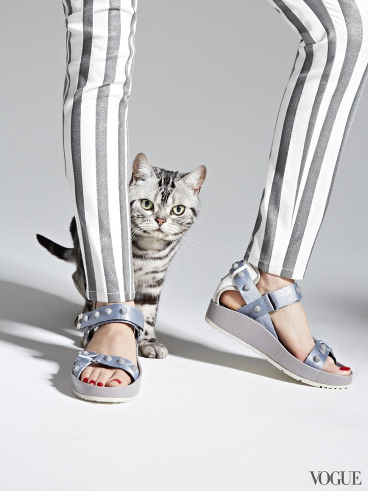 """Vogue """"The Cat and The Flat"""" Editorial"""