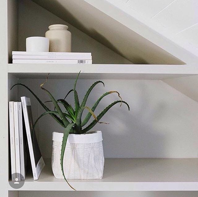 This beautiful ivory soft pot will bring a modern elegance to your indoor pot plant 🌿 or as a beautiful container for storing trinkets such as scarves & jewellery 🙌🏻 Available online✅⠀ // 📸 @novell