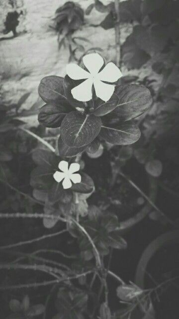 Love#black and white#photography