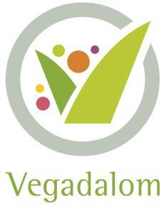 Vegadalom · Növényi ételek házhoz szállítása egészséges alapanyagokból