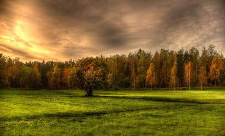 Autumn by Rosen Velinov on 500px