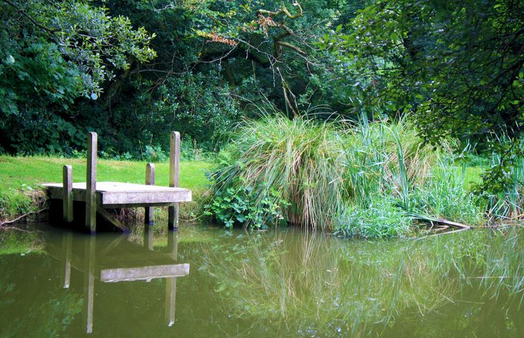 beautiful fishing lakes and wildlife to experience at Meadow Lakes holiday Park