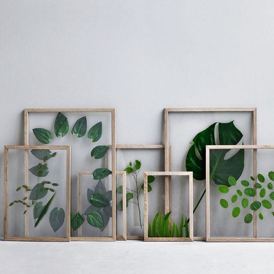 De floating frames van MOEBE bij LOFT zijn ideaal om mooie, platte items te presenteren. Bijvoorbeeld groen blad en bloemen om een urban jungle te creëren.