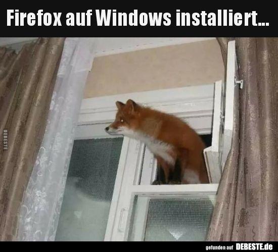 Firefox instalado no Windows … | Fotos engraçadas, provérbios, piadas, muito engraçadas …   – Bilder mit sprüchen