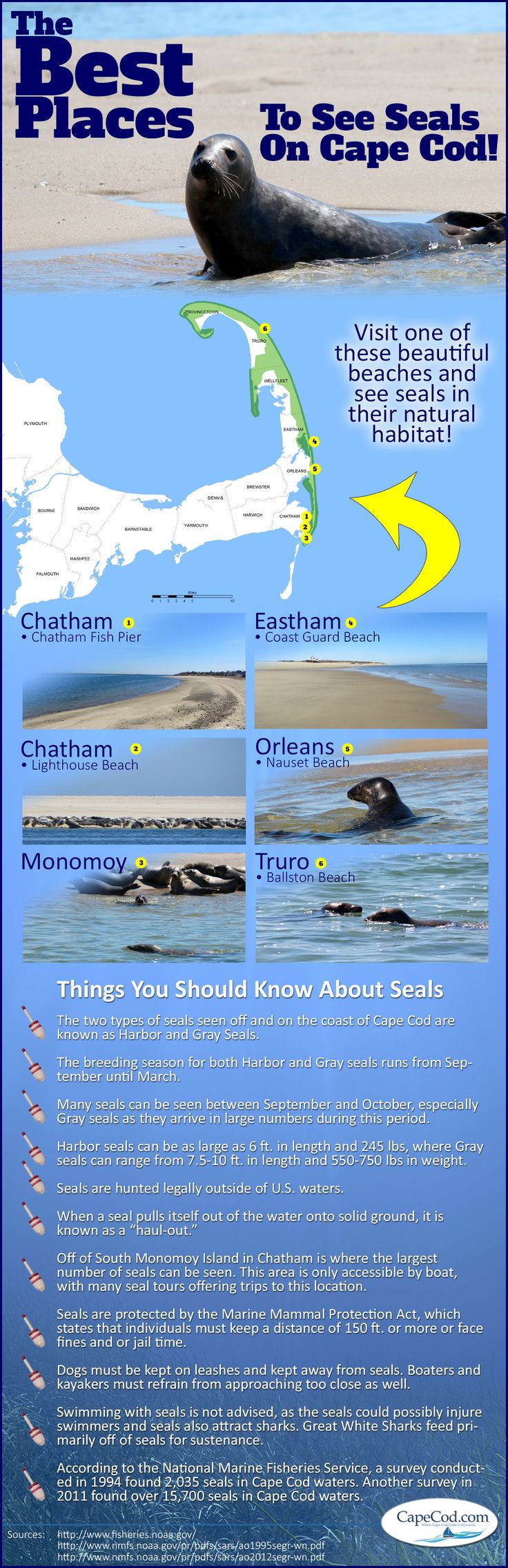 57 best images about new england maps on pinterest rhode for Case modello cape cod