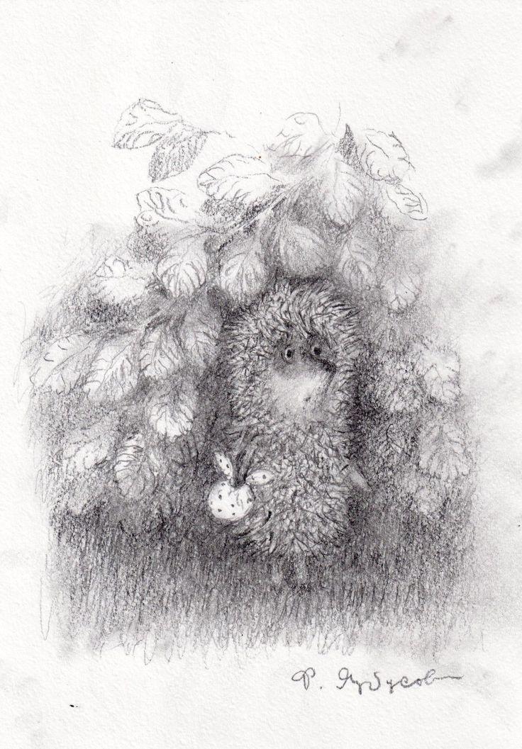 также ежик в тумане картинка черно-белая расписание