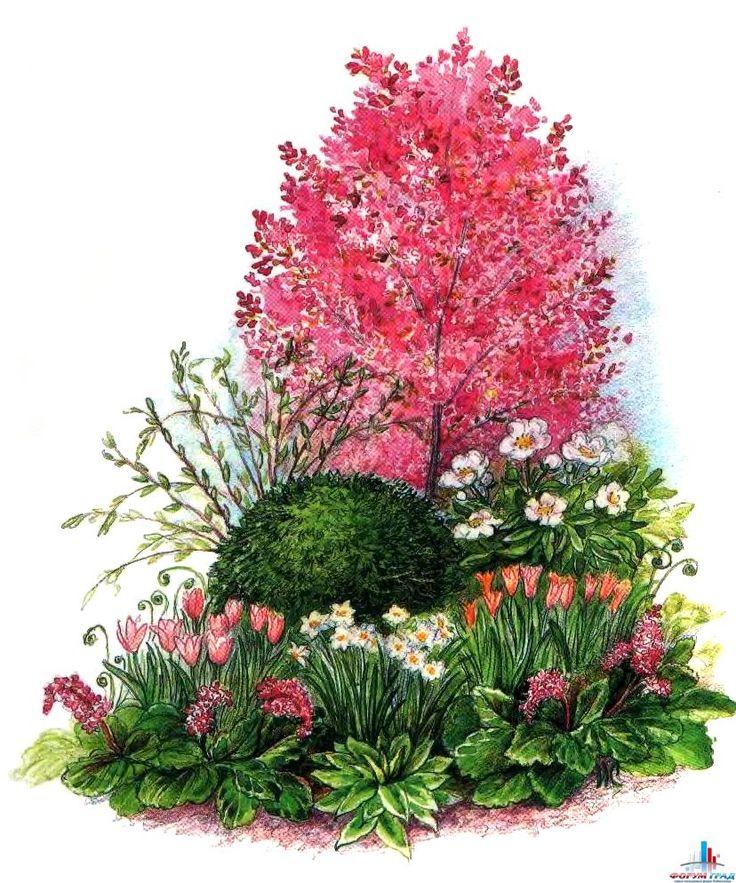 Прекрасная архитектурная доминанта: замечательные примеры цветников с невысокими деревьями - Как поэтичен ты, как свеж и как хорош, от роскоши твоей порой бросает в дрожь, цветущий сад, прославленный в веках! Мы здесь поговорим о цветниках - Форум-Град