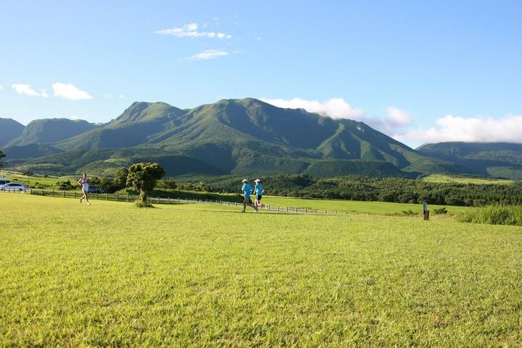 久住高原:日本一のマラソンコースは、これからが賑わいのピークを迎えます/大分県竹田市