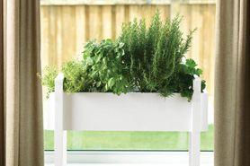 Create a Planter Box