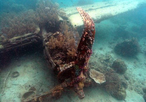 Wreck of a P-38 Lightning, Solomon Islands
