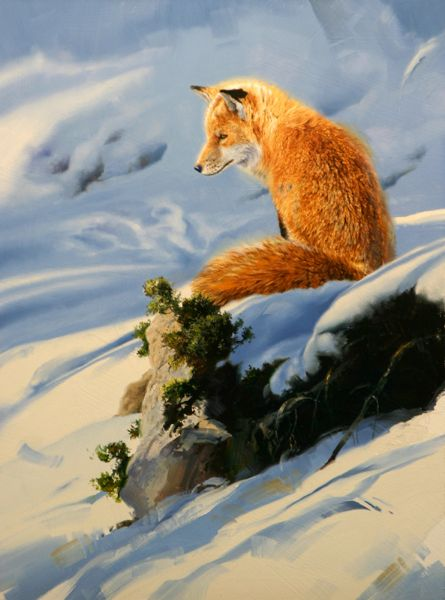 Red fox painting by Mark Kelso | Horizon Fine Art Gallery : Jackson Hole Art Gallery, Jackson, Wyoming
