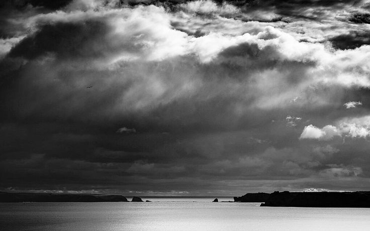 Falling a lot behind with the nature challenge so here's number 2.  Bird in a stormy  A stormy sky taken looking out from Tenby's South Beach. The clouds gathered all afternoon, growing darker and blacker by the minute. The sun found a gap, filling the foreground and sea with light and loved the contrasts that instantly jumped out.  #Olympus Em5MkII 12-40mm f2.8 pro lens @ ISO 200 40mm f9.0 1/800sec