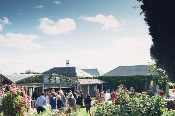 CORIOLE VINEYARDS // Fleurieu Peninsula, SA // via #WedShed. http://www.wedshed.com.au/wedding_venues/coriole-vineyards-mclaren-vale/