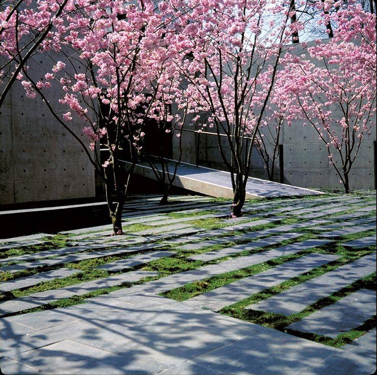 fondation-jeantet-by-agence-ter-02 « Landscape Architecture Works | Landezine