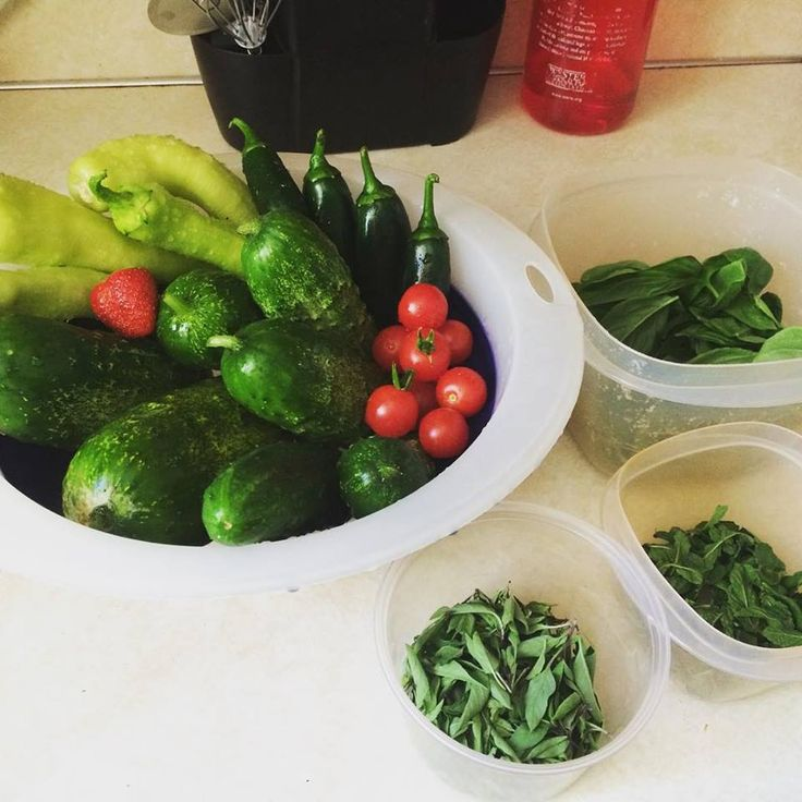 How do you use nutrition to maintain a healthy lifestyle?