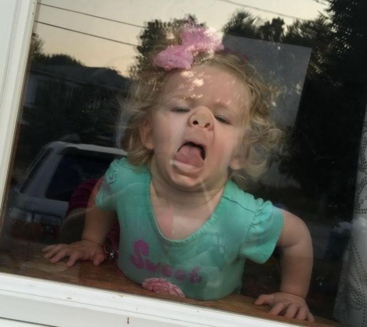 25 доказательств того, что дети — сумасшедшие люди