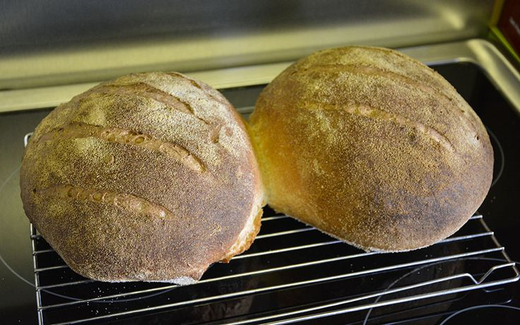 (15) Place loaves on to a wire rack to cool and enjoy the sound of the crust cracking. The crust will be quite hard at this stage, but as the loaf cools, moisture will travel from the inside to the crust and soften it a little. Try to let it cool before eating, as the bread is still changing as it cools. Just warm is probably OK. (Chris S)