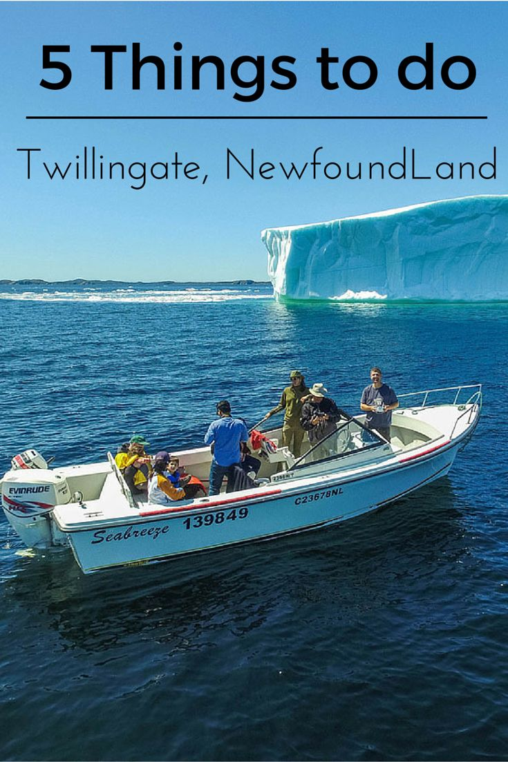 Twillingate is a town located off the northeastern shore of Newfoundland. Although it is a small town with a population of less than 2500 it has a lot to offer.