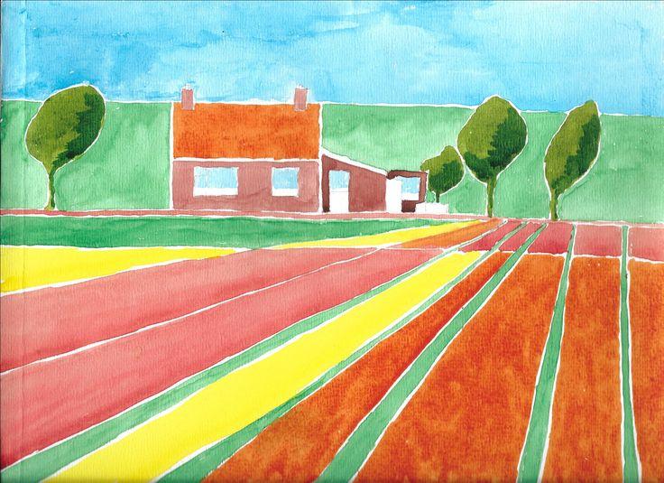 Bollenvelden (aquarel)