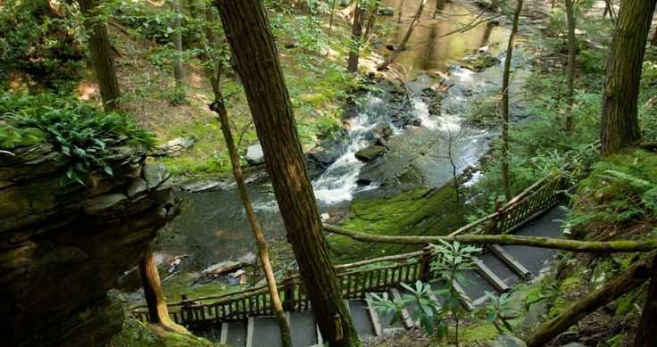 """Known as """"The Niagara Falls of Pennsylvania,"""" Bushkill Falls in the @poconotourism region offer stunning views of seven #waterfalls. Visitors can access the falls on a series of trails and rustic bridges, and each of the falls offers one or two designated viewing locations for scenic overlooks."""