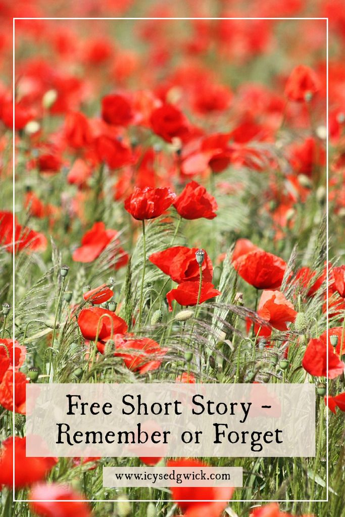 This free short story explores the memory of a First World War soldier in honour of Remembrance Sunday. http://www.icysedgwick.com/remember-forget/