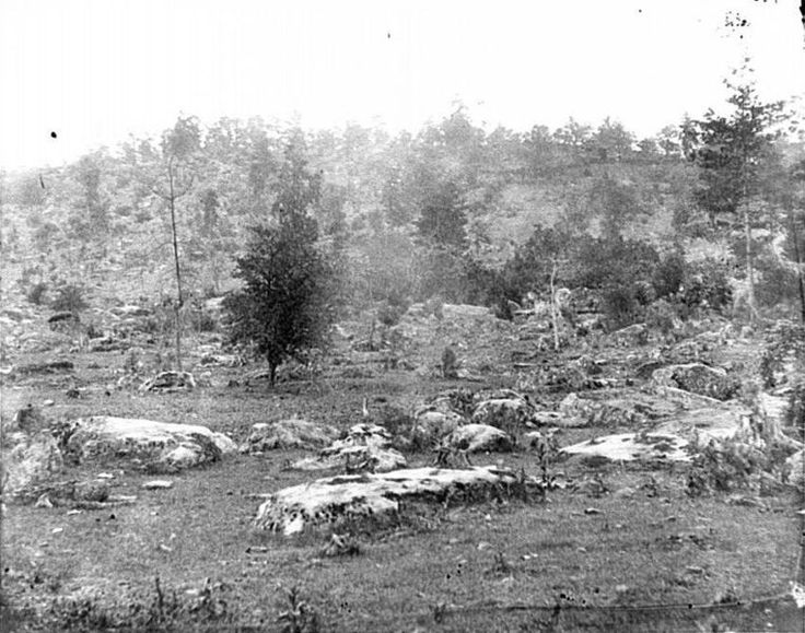 battle of gettysburg fact sheet Battles for the confederate soldier: the second battle of bull run and the battle of gettysburg to prepare for writing your letters, first complete a fact sheet (which your teacher has provided for you) for each of your battles that lists the important information about them.