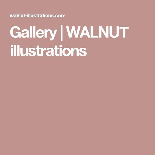 Gallery   WALNUT illustrations