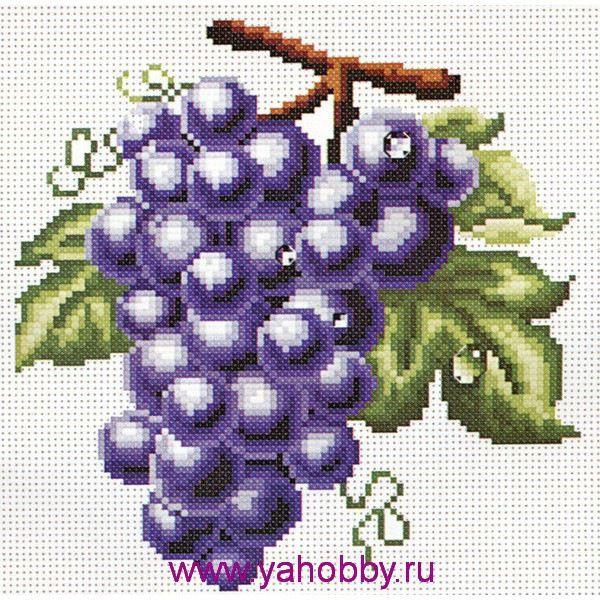 Gallery.ru / Фото #6 - Flora - valery-kobec