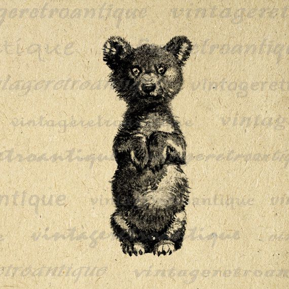 Digital Printable Little Bear Image Antique Illustration Graphic Download Vintage Clip Art. Printable high resolution digital graphic clip art for iron on transfers, making prints, and other great uses. Great for etsy products. This digital image is high quality, high resolution at 8½ x 11 inches. Transparent background version included with all images.