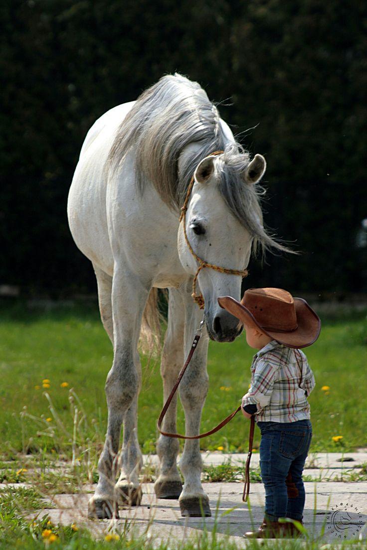 Pequeño vaquero y su caballo dulce