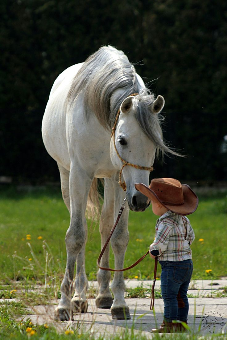 Little cowboy and his sweet horse!