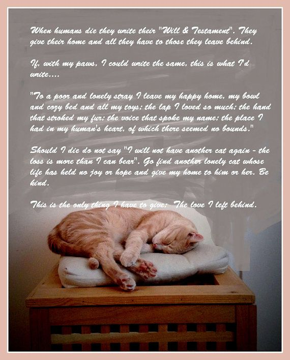 Cats Last Will and Testament.    I adapted this from something else which touched my heart when my old feline friend passed away. As a cat lover it may touch yours too.    I will be listing more of these Prints in the coming days - please check back for the new arrivals.    The print will be : 8 inches X 10 inches APPROXIMATELY and will be on 230gm Gloss stock of A4 size so that you can, if you wish, slip it straight into an A4 size frame or mount..    I have removed the dust-marks…