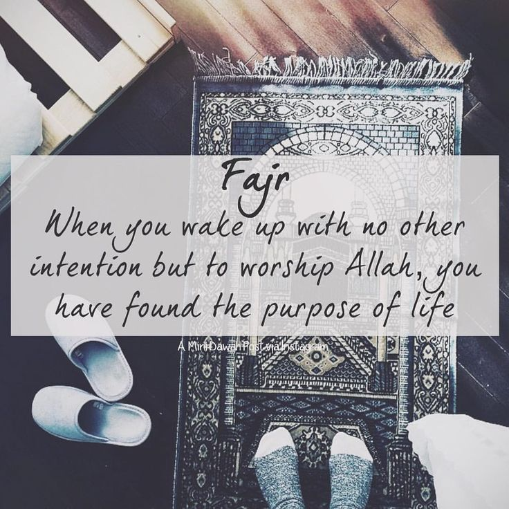 "minidawah: ""Fajr when you wake up with no other intention but to worship Allah, you have found the purpose of life! ~ Snapchat: minidawah Like